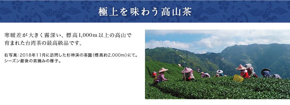 極上を味わう高山茶