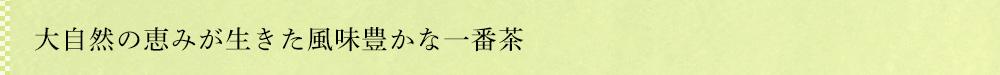 屋久島新茶 あさつゆ 2019
