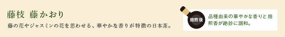 藤枝 藤かおり