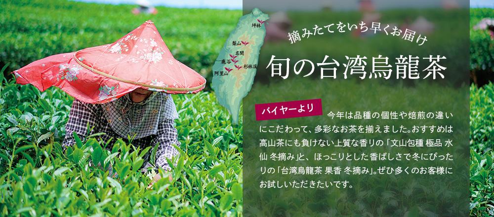 摘みたてをいち早くお届け 旬の台湾烏龍茶