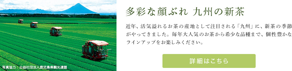 多彩な顔ぶれ 九州の新茶