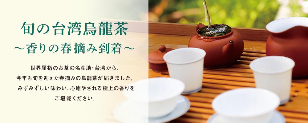 旬の台湾烏龍茶 〜香りの春摘み到着〜