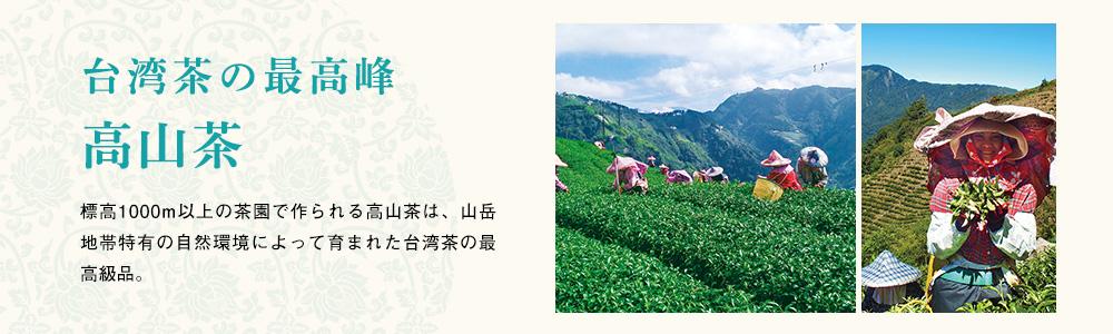 台湾茶の最高峰 高山茶