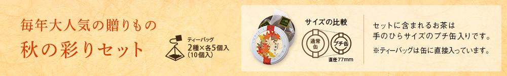 秋の彩りセット