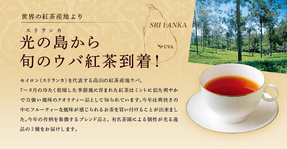 光の島から 旬のウバ紅茶到着!