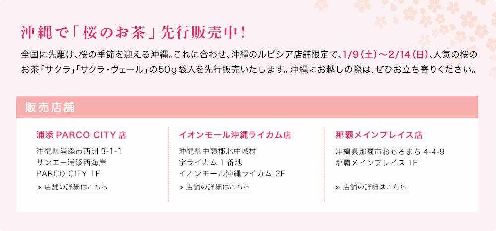 沖縄で「桜のお茶」先行販売中!