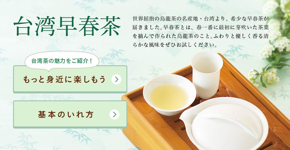 台湾早春茶