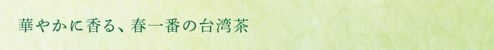 華やかに香る、春一番の台湾茶