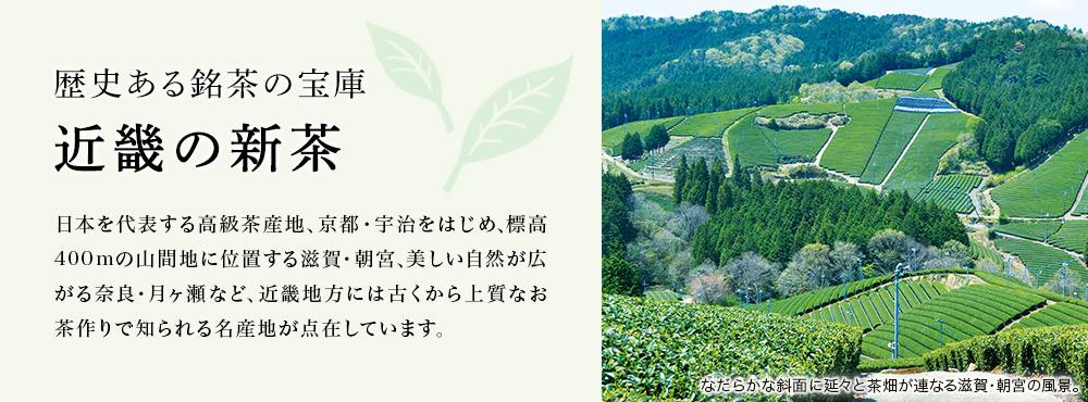 近畿の新茶