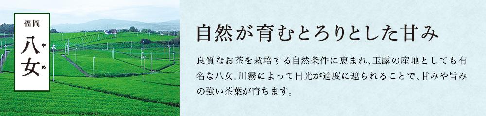 福岡・八女