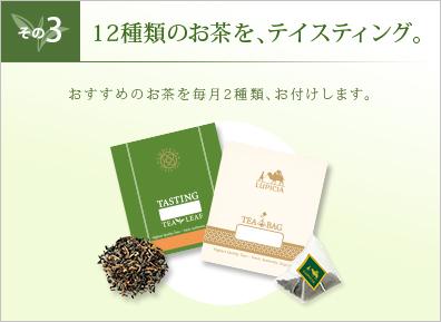 その3 24種類のお茶を、テイスティング。