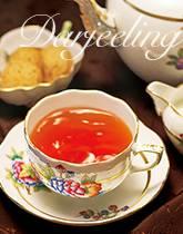 1年でいちばん甘い ダージリン秋摘み紅茶
