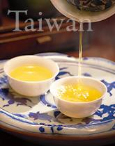 台湾冬摘み烏龍茶