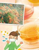 甜茶(てんちゃ)で花粉対策