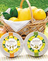 甘酸っぱいレモンが香る ハツコイ&ナツコイ