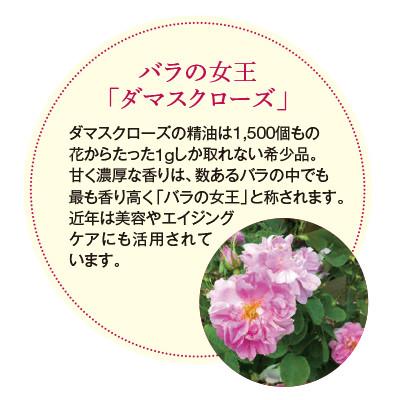 デカフェ・ダマスクローズ - 40g S 袋入