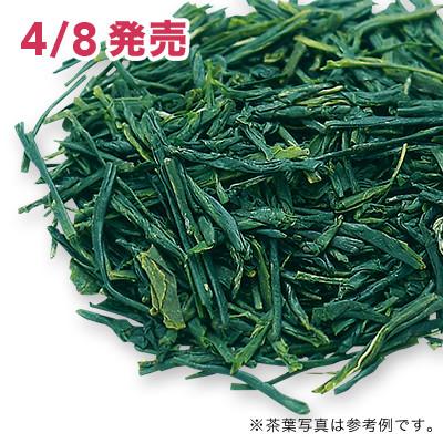 種子島新茶 松寿 2020 - 50g S 缶入