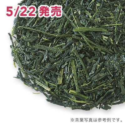 八女新茶 2020 - 50g S 缶入