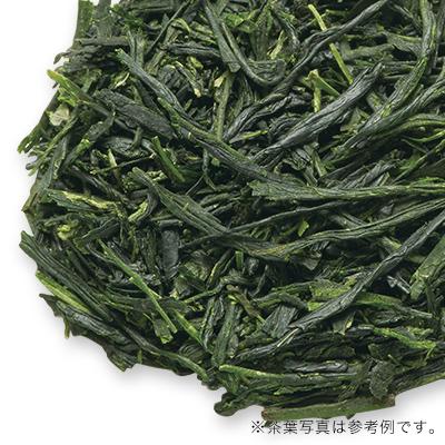 八女伝統本玉露新茶 2020 - 40g S 缶入