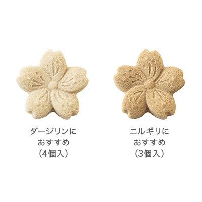 紅茶のお砂糖 祝来(さくら)