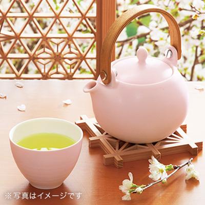 美濃焼 土瓶急須(みのやき どびんきゅうす)