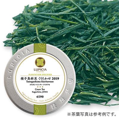 日本茶2種とお茶請け「青陽(せいよう)」