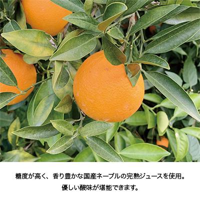 尾道瀬戸田ネーブルカード
