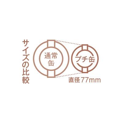 ショコラプチ缶2種セット「シュシュ」