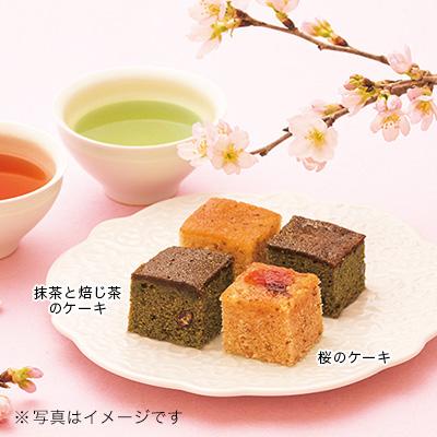 抹茶と焙じ茶のケーキ