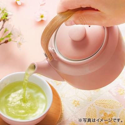 美濃焼 土瓶急須 桜