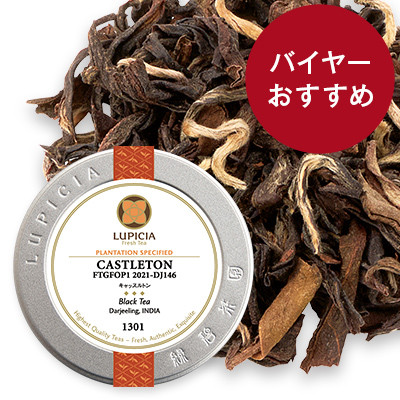 キャッスルトン, 2021-DJ146 - 50g M 缶入