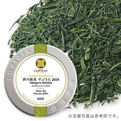 掛川新茶 2020 - 50g S 缶入