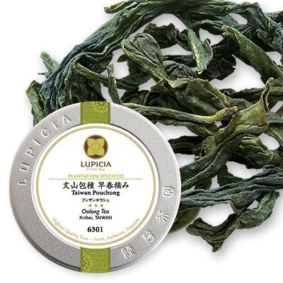 文山包種 早春摘み - 25g M 缶入