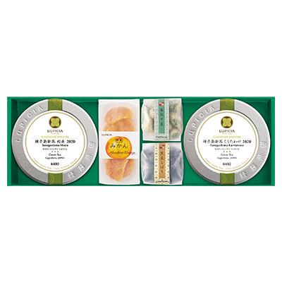 日本茶2種とお菓子「青陽(せいよう)」