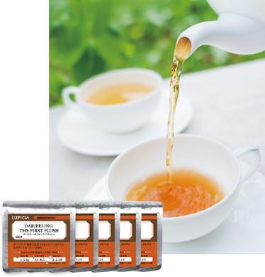 スターターセット・紅茶ノンフレーバード