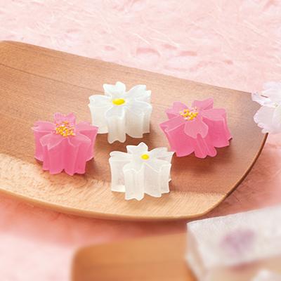 小さな桜の琥珀(こはく)