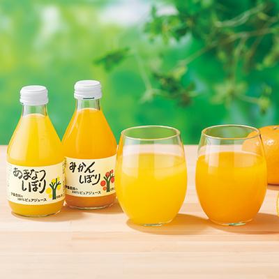 和歌山の柑橘100%ピュアジュース8本ギフトセット