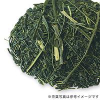 狭山新茶 2021