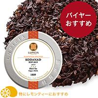 コダナド 201950g缶入