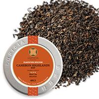 キャメロンハイランド50g缶入