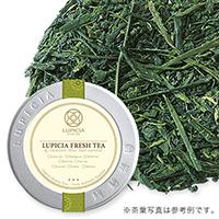 鹿児島新茶 202050g缶入