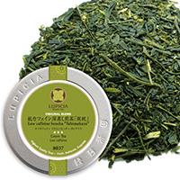 低カフェイン深蒸し煎茶 「旅枕」50g缶入