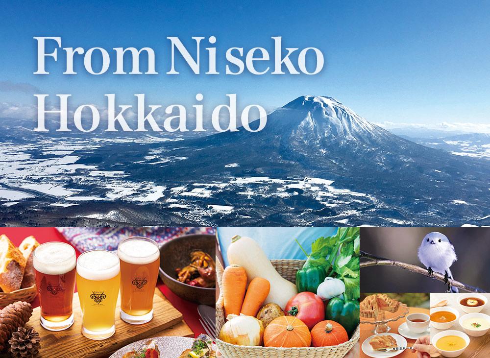from Niseko