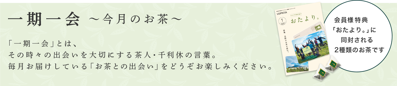 一期一会~今月のお茶〜